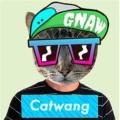 Скачать Catwang для windows phone - онлайн фотошоп